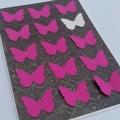 Přání motýlkové 2.