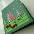 Přání vánoční zelené 2.